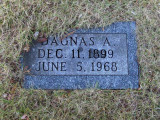 Dagnas was the eldest child of, Victor Charles Johnson & his wife, Amanda [Barnes] Johnson. The notes I read state that Dagnas was a daughter. However these same notes read that Dagnas was also the town pharmacist for Newberry. I have my doubts about a town pharmacist being a woman, during that time period. The truth however, is that we simply don't yet know. What we do know is that Dagnas was the eldest of eleven children, and is buried in the Johnson Family Plot, in Forest Home Cemetery, Newberry. Dagnas was born 11 December 1899 in Ashland, Ashland, WS & died in Newberry, Luce, MI on 05 June 1968.
