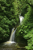 Waterfall in Monteverde Cloud Forest Reserve, Costa Rica