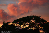 Sunset in Monteverde, Costa Rica