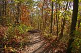 East Pinnacle trail