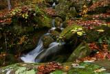 Anglin creek