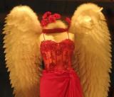 Red Angel_604g