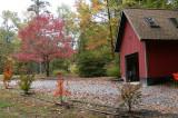 Fall at the Lake.JPG