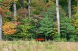 Red Bench.JPG
