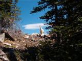 Nason Ridge Lookout Mtn Goat