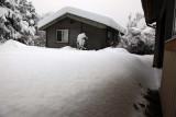Looking Out K's Shop Door Towards Little House  (Snowstorm-121808-13.jpg)