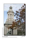 Dublin - Trinity College _D2B8220.jpg
