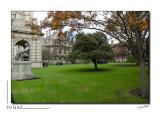 Dublin - Trinity College _D2B8226.jpg