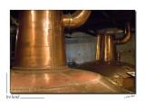 Midleton Distillery_D2B8028.jpg
