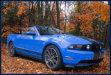 My new  stang  grabber  2010