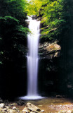 Waterfalls of TN I Been To