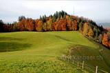 Ochsenwald (91882)