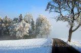 An der Nebelgrenze (8707)