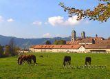 Kloster Einsiedeln (50038)