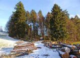 Ochsenwald (05205)