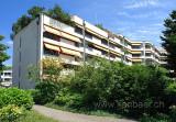 Landhausstrasse (81981)