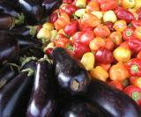 Eggplants and peppers 2.jpg