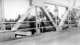1938 - Miss Lutrelle Conger with Margie and another friend on the Hialeah bridge over the Miami Canal