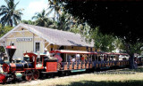 1970's - the Iron Horse scenic railroad miniature train that circled the Crandon Park Zoo on Key Biscayne