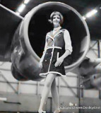 Beauty from American Airlines in the late 1960's