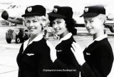 Three beauties from SAS (Scandinavian Airlines System)