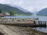 A Balestrand cruise ship on fjord   1201
