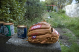 Rolins Custom Glove