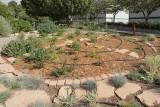 Oasis Garden - Area Z40 (9219)
