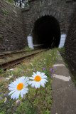 In front of Besnicky tunnel