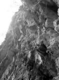 Cima Ovest : premier relais (sur arbre)