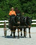 Orleton Farm Show 2008