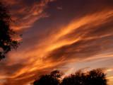 12-3-08Z6 Sunset 1.jpg