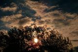 Mottled Clouds.jpg
