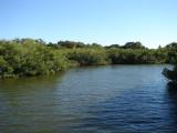 Webbs Cove