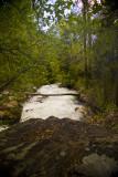 Big Cottonwood Creek (above S-turn)