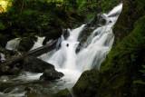 Rodney Falls 2008
