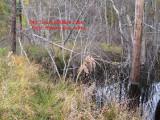646.Beaver site.loose.wires.jpg
