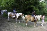 june 28 horses