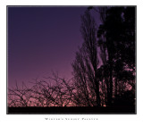 Winters Sunset Palette