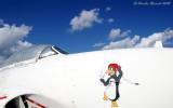 2008 TICO Airshow