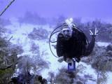 Dive Instructor Underwater