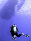 Diver Returning to the Boat 2