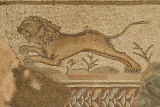 Mosaic of Lion at Paphos Archaeological Site