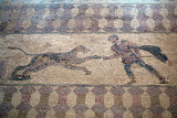Pafos Archaeological Site Mosaics 36