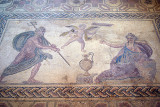 Pafos Archaeological Site Mosaics 43