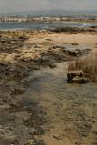 Pafos Coastline