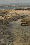 Pafos Coastline 06