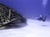 Swimming Around the Thunderdome