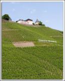 EU_08_Rhine_004.jpg