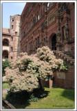 EU_08_Heidelberg_041.jpg
